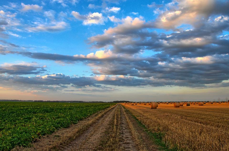 Des milliers d emplois dans le secteur agricole le for Emploi paysage